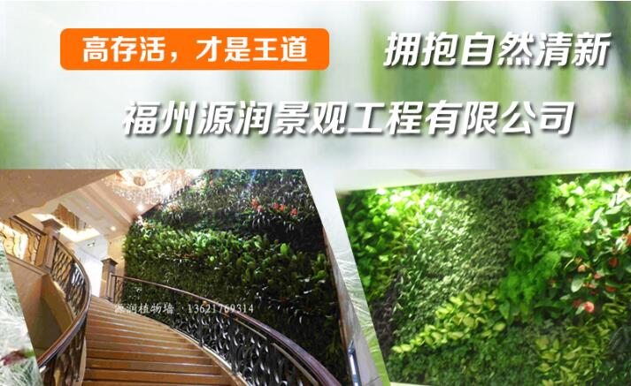 福州庭院设计选择铭赞富海360做企业网络推广方案