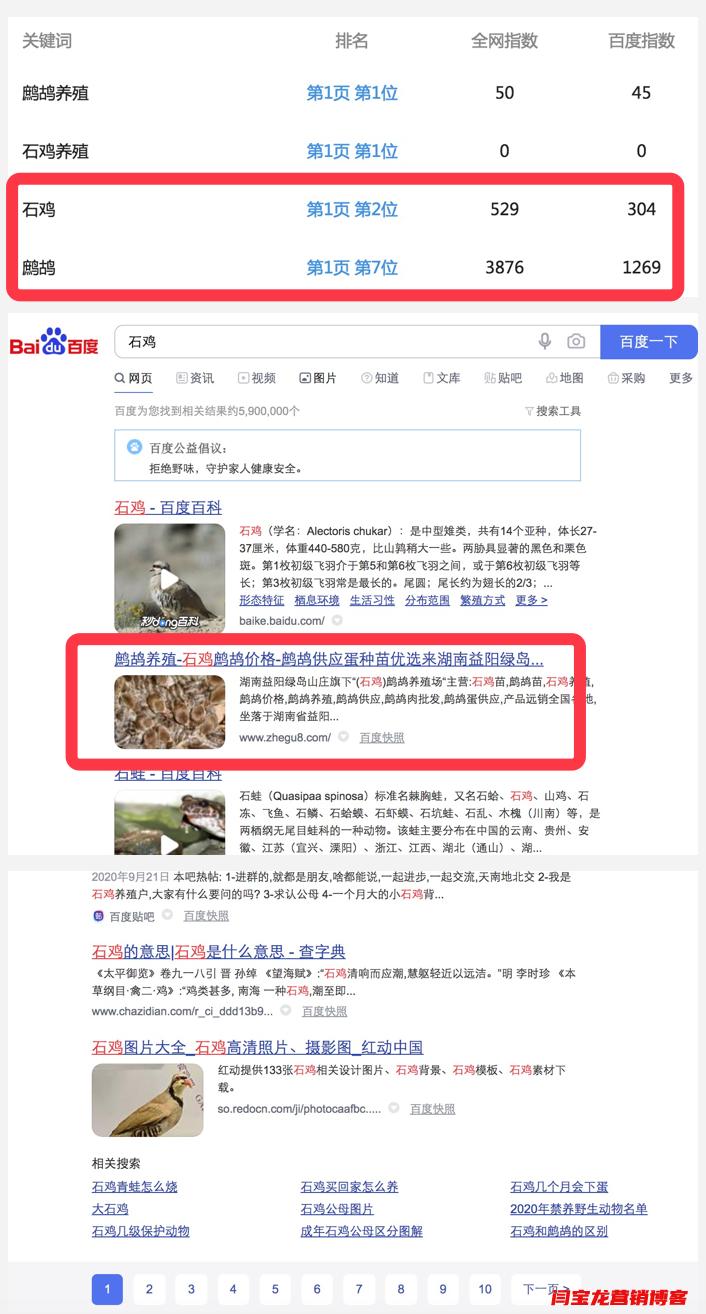 鹧鸪|石鸡等seo单词优化全部排名首页,效果很不错